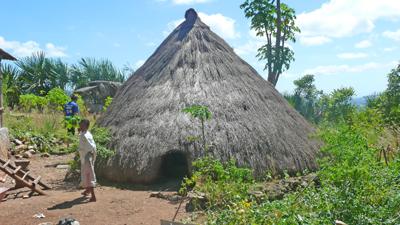 East Timor 2008